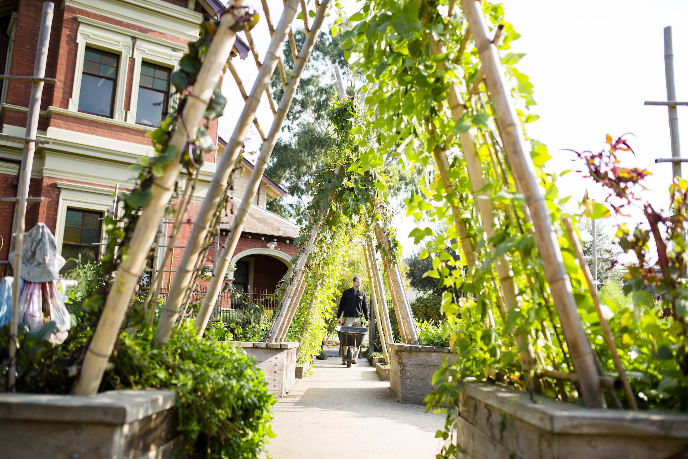 The Ian Potter Foundation Children's Garden