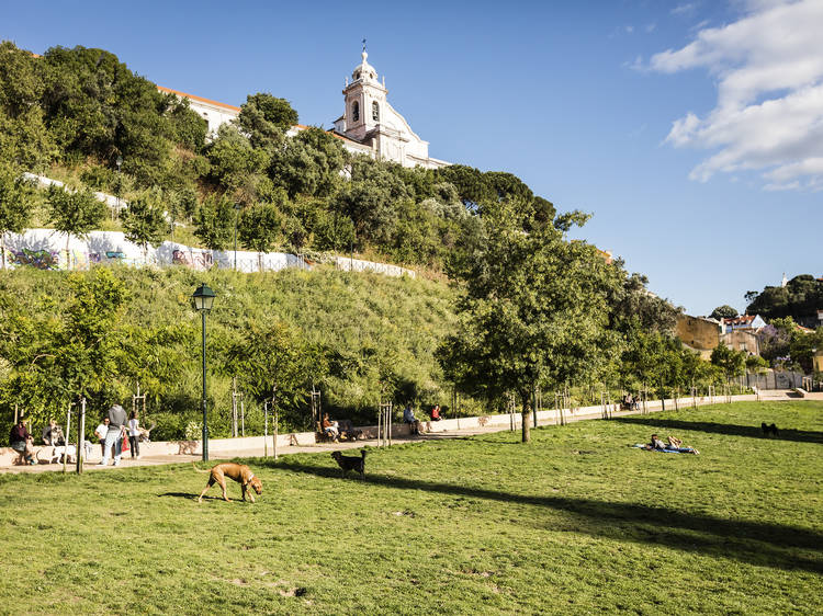 Top 10 Things to do in Graça and Castelo