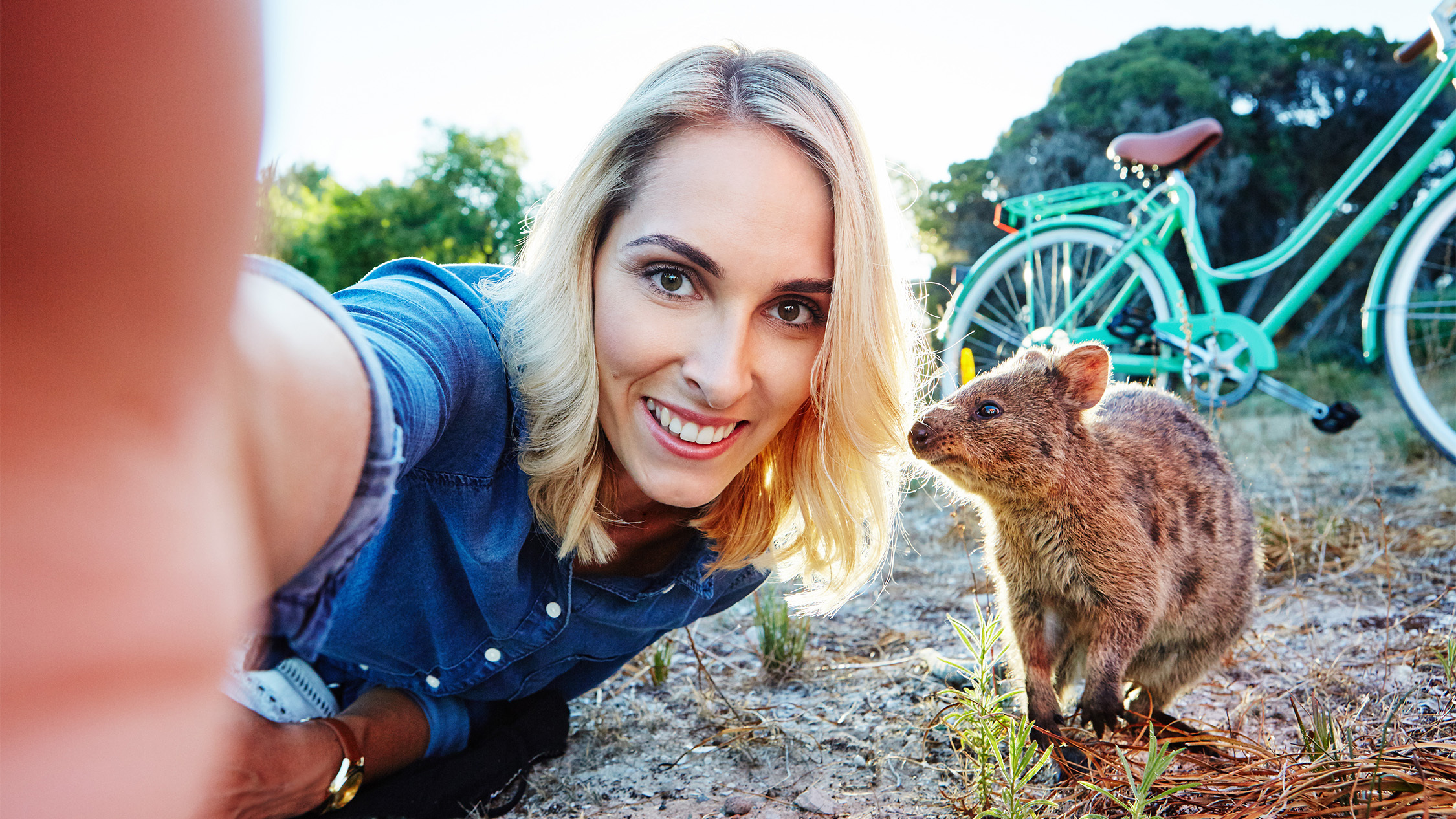 Play: Selfie with a quokka