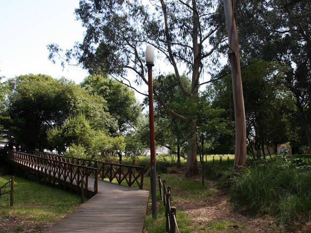 Dê um passeio pelo Parque do Carriçal...