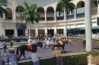 Freedom Fest at Gulfstream Park