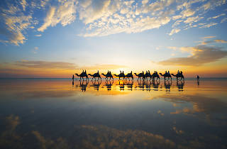 Cable Beach camel tour