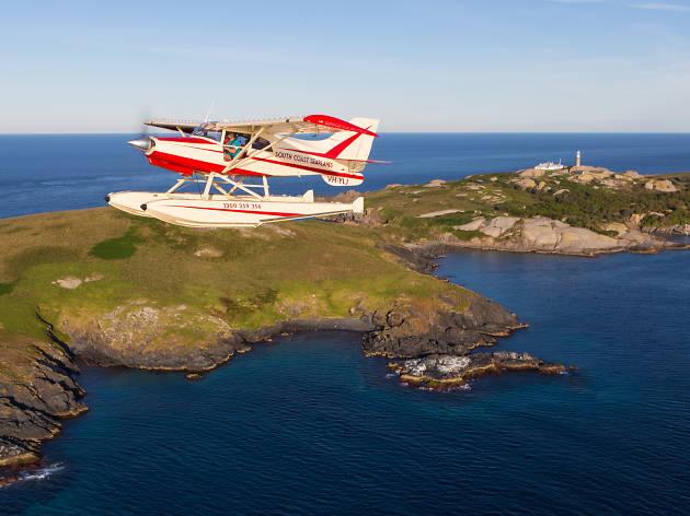 Sea Plane over Montague Island