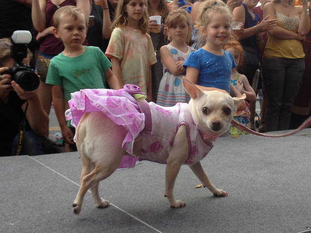 A fashion show for dogs is returning to Park Slope