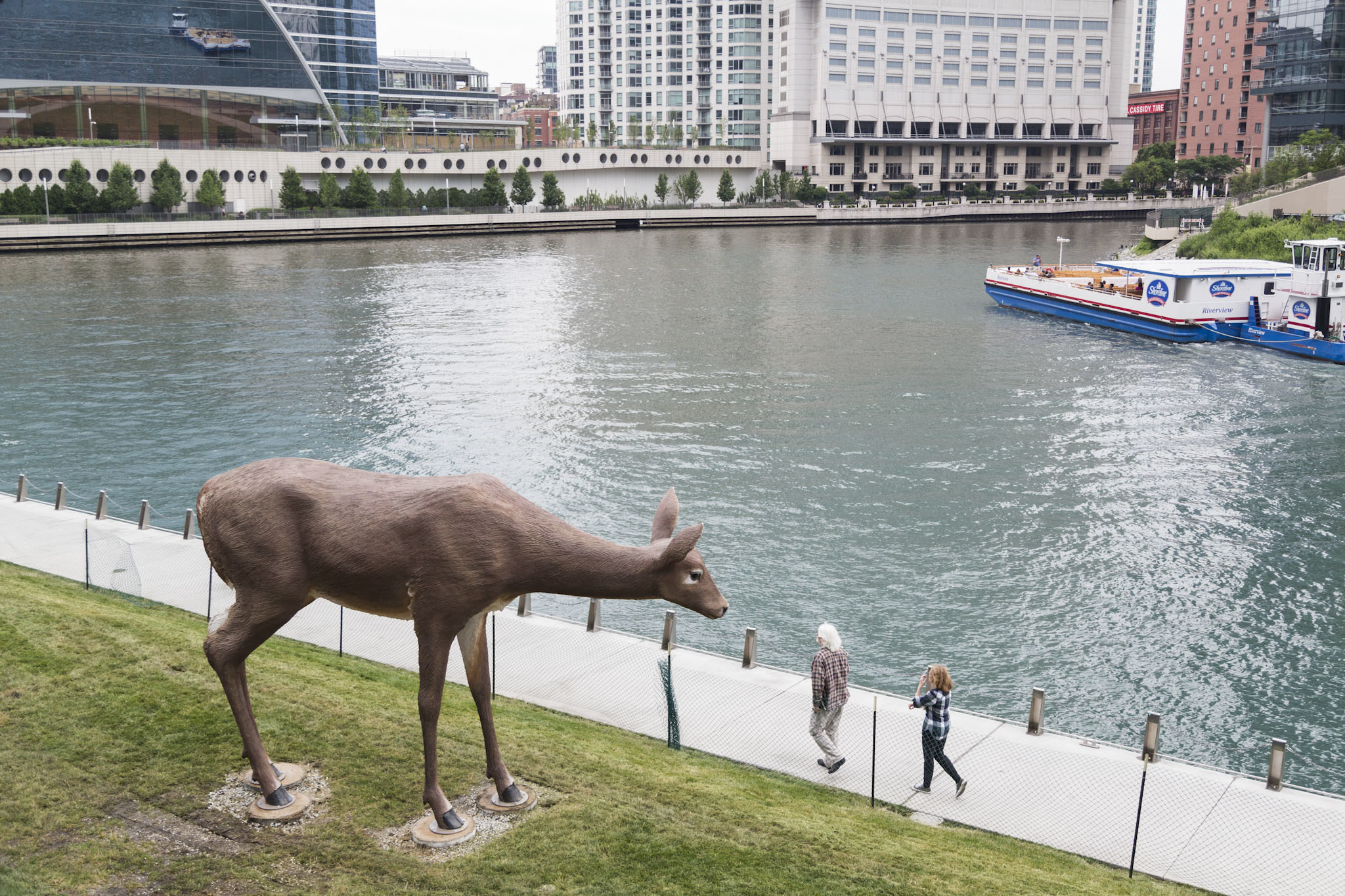 Tony Tasset Deer