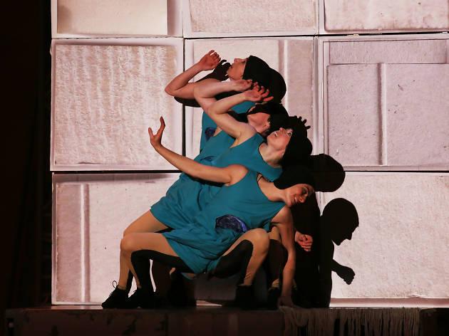 Grec Festival Dance: El buit