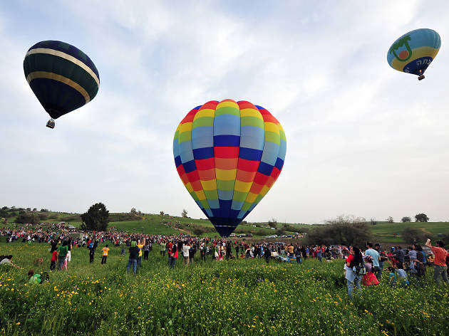 International Hot Air Balloon Festival