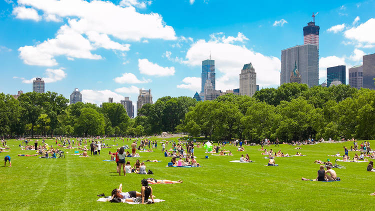 Check out these awesome free things to do in NYC