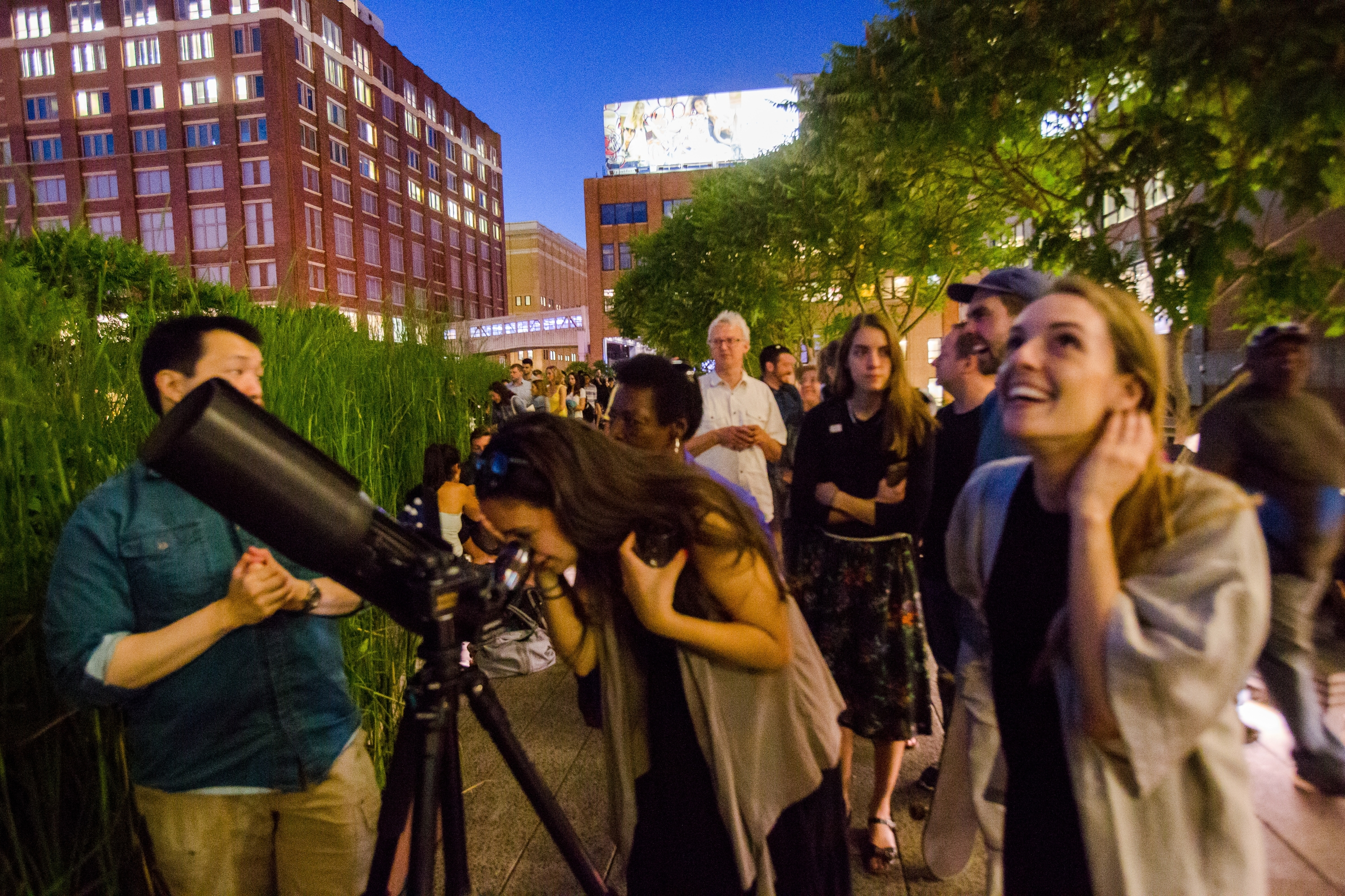 Go stargazing on the High Line this summer