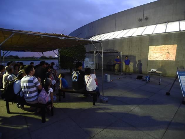 Night of Wonder〜夜の不思議の水族園〜