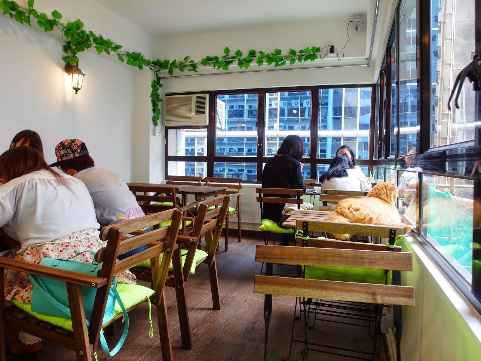 Cafe de Kitten