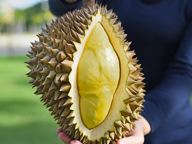 Guide to durian