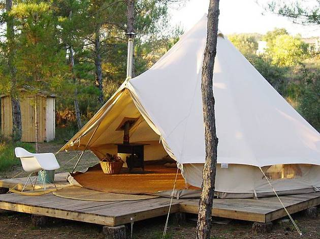 Forest Day Glamping