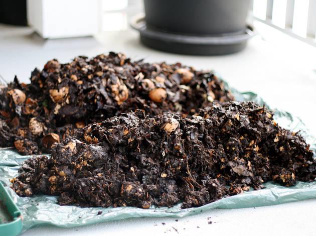 Start composting your food scraps