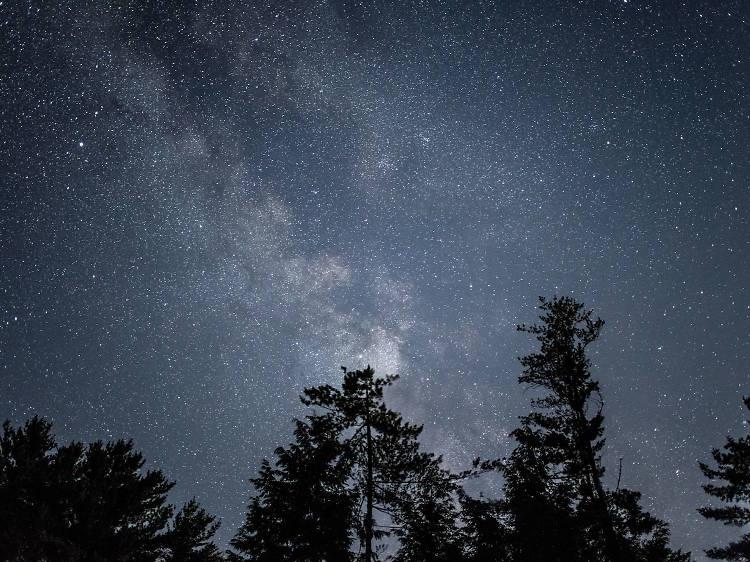 Astronomical Societies