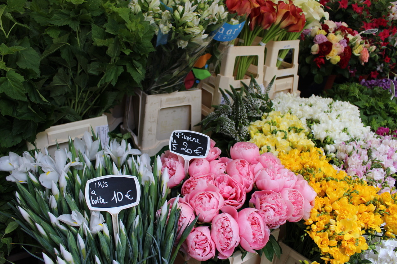 7 dreamy flower markets and shops in Paris