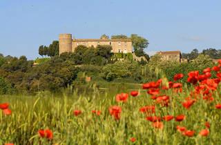 Castell de Foixà