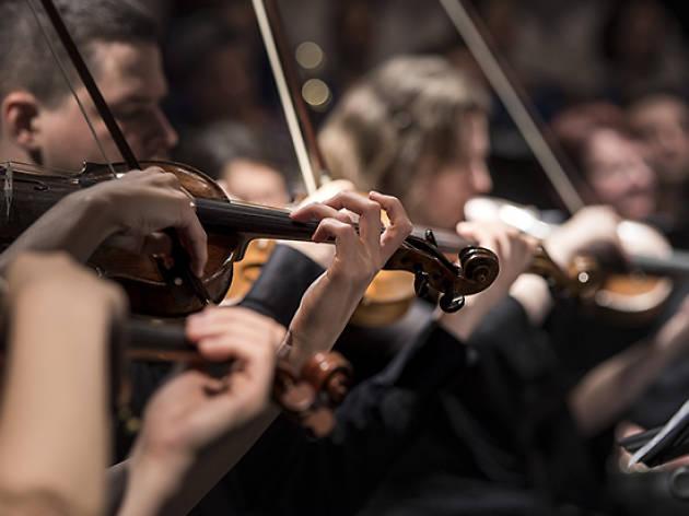 Orquestra de cambra catalana. Concert de migdia