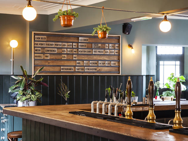 best bars and pubs in stoke newington