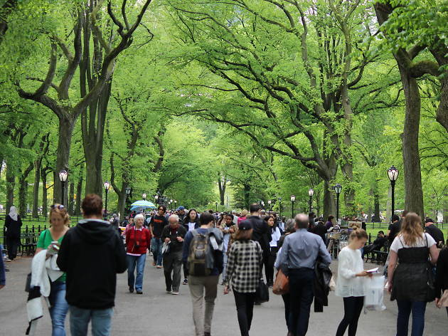 There's a massive festival in Central Park this weekend with music, comedy and more