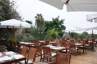 Malena restaurant