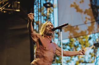 Iggy Pop at FYF Fest 2017