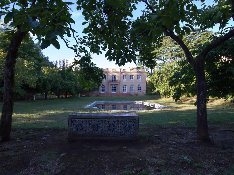 Discover the Casa das Artes