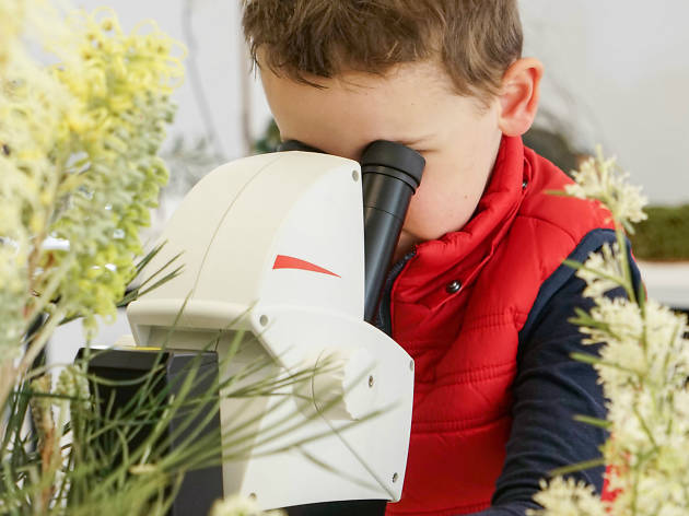 Child looking through microscope with plants surrounding him
