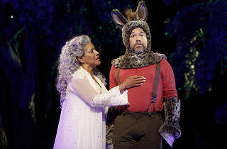 A Midsummer Night's Dream (Shakespeare in the Park 2017)