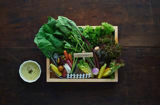 『野菜畑の箱庭バーニャ・サラダ』