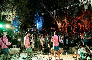 Shutka Festival