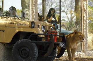 Africam Safari (Foto: Cortesía Africam Safari)