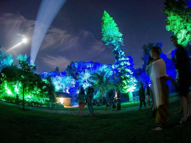 LUMINA Festival da Luz