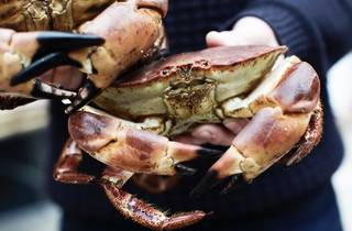 Seafood and Craft Beer Feast