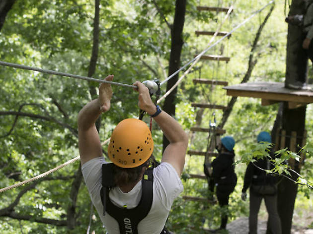 Bronx Zoo Treetop Adventure
