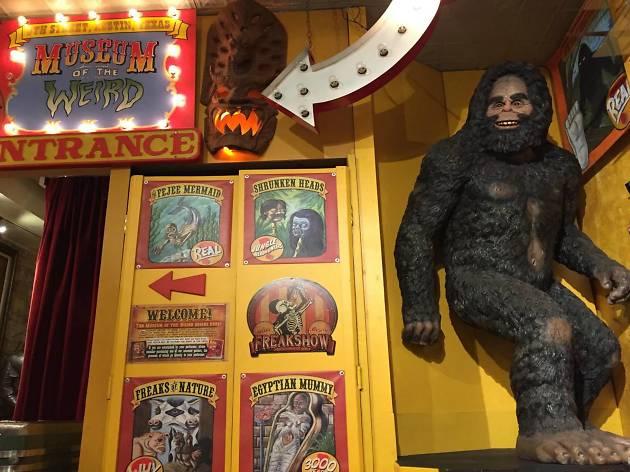 Museum Of The Weird Austin 7