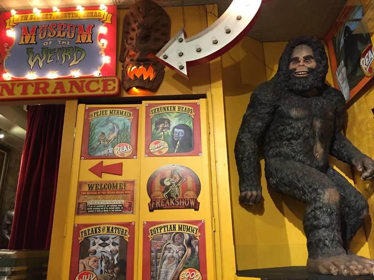 Museum of the Weird | Austin, TX