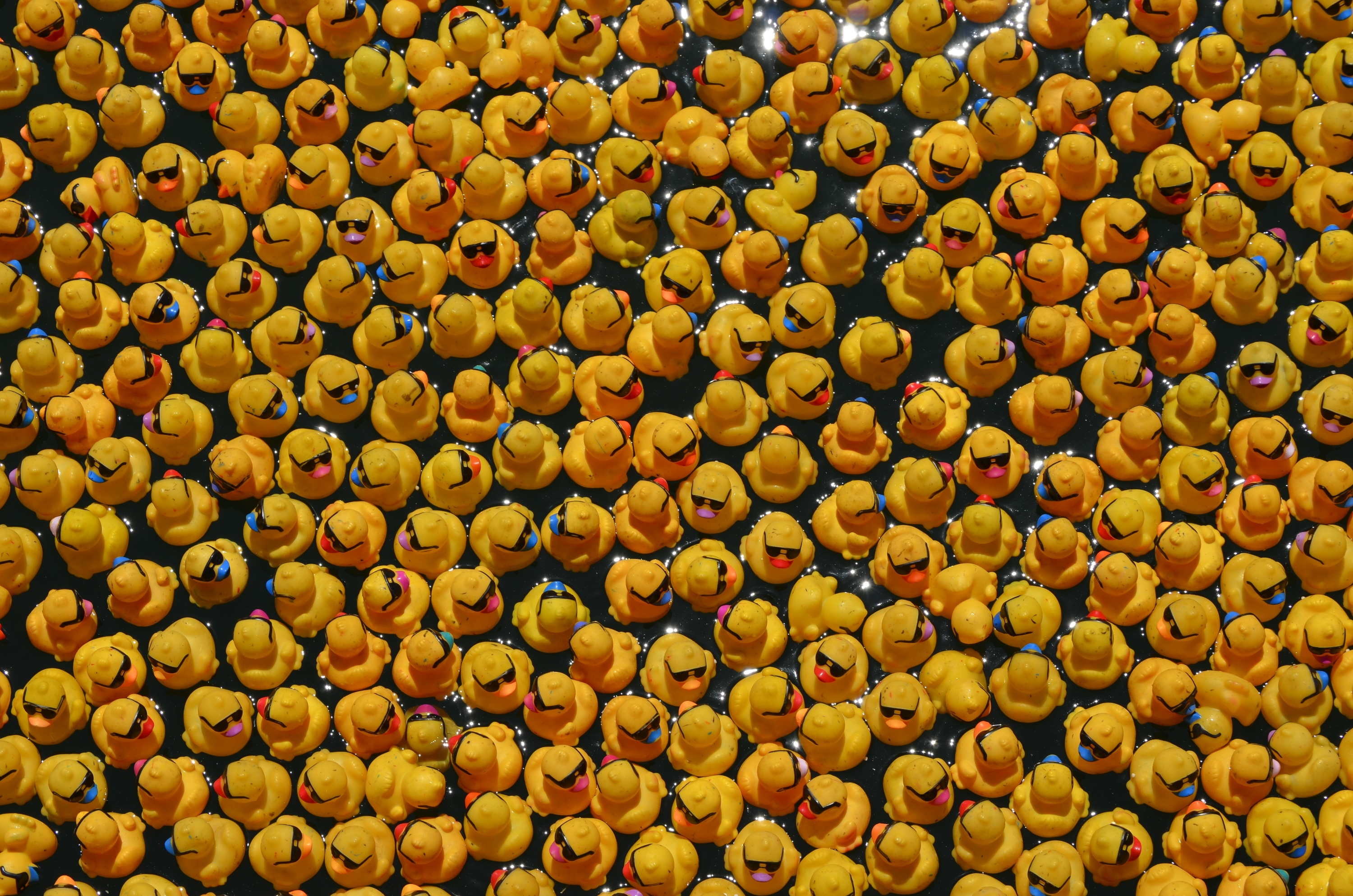More than 50,000 yellow rubber ducks will set sail in the Chicago ...