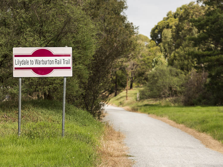 Lilydale to Warburton rail trail