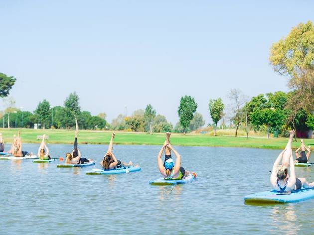 Find your balance at SUP Yoga