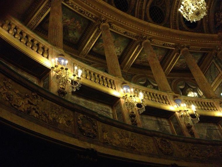 Versailles tours: VIP Palace of Versailles