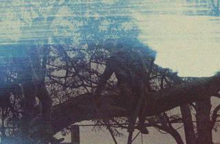 Has a shadow (Foto: Cortesía Has a shadow)