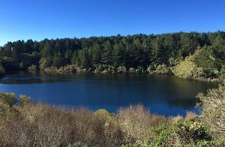 A lovely lake view at Mount Tamalpais State Park