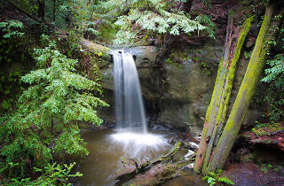 Waterfall at Big Basin Redwoods State Park