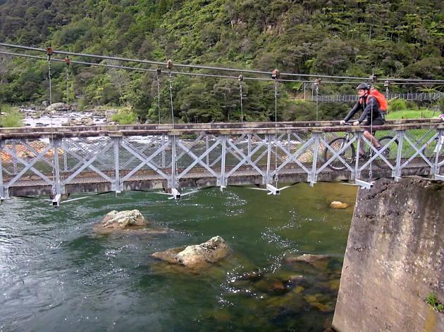Hauraki Rail Trail in New Zealand