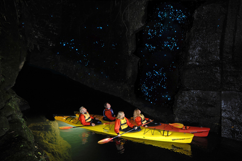 Wairamarino Glow Worm Kayak Tours