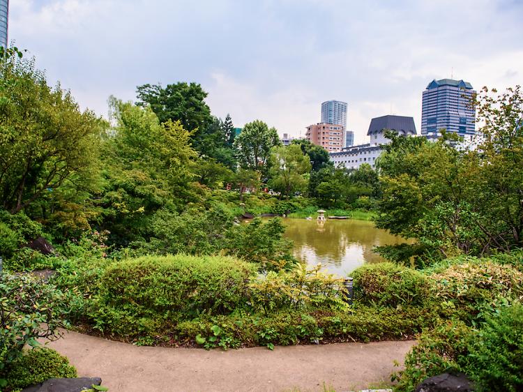 Stroll around an inner-city park