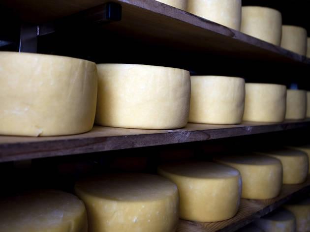 Compre queijos directamente ao produtor