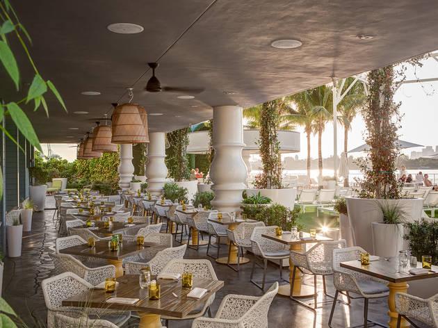 Image result for Mondrian Caffe, Miami Beach