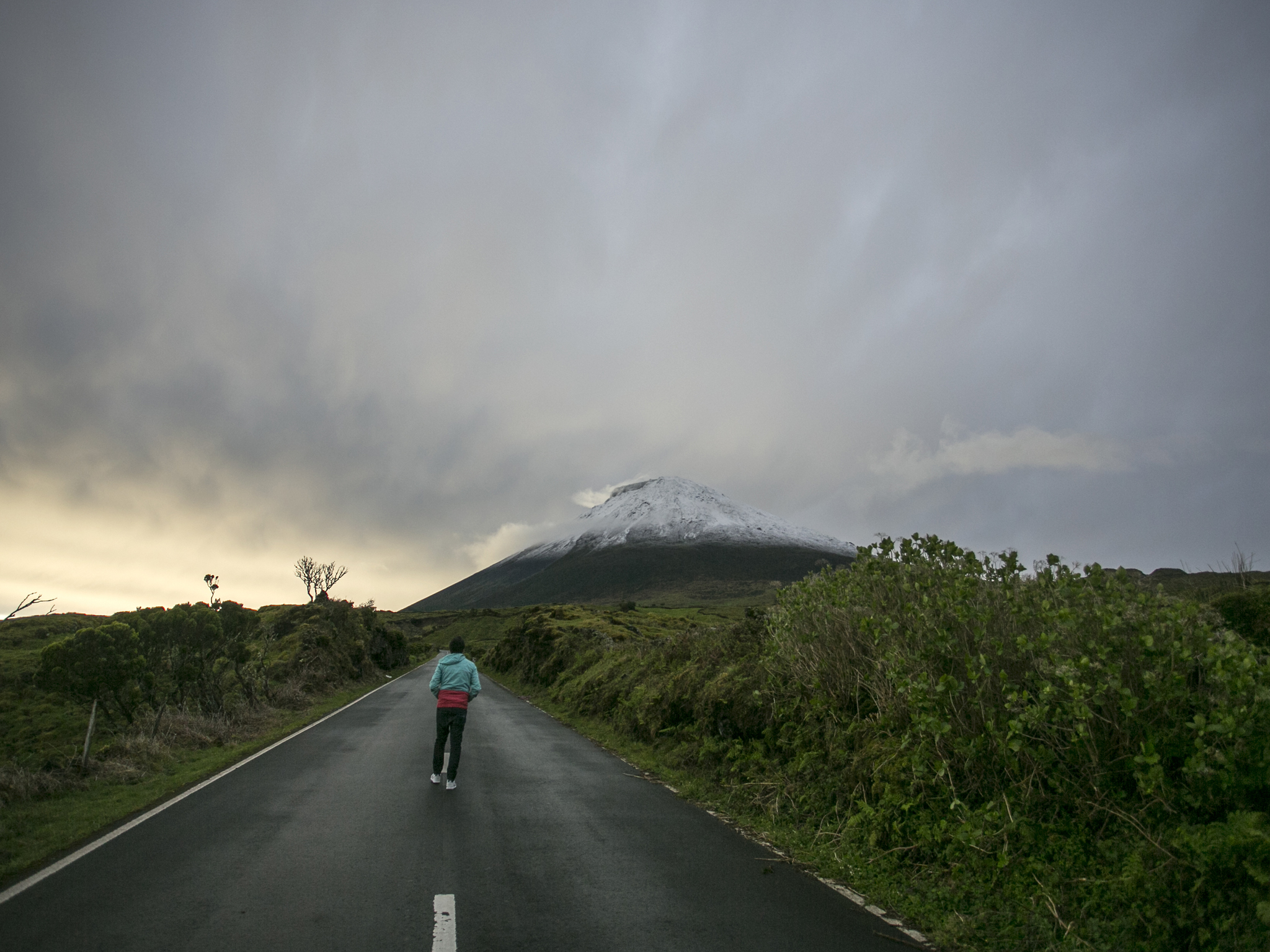 Estrada Longitudinal